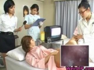 oriental wife is examining female workers